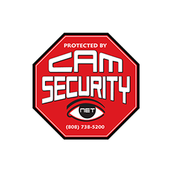 Cam-Security_300dpi