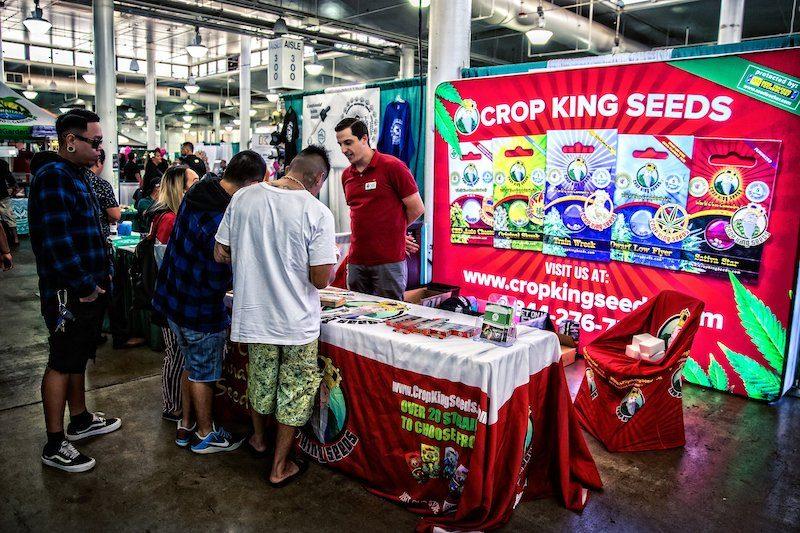 Hawaii Cannabis Expo 2019