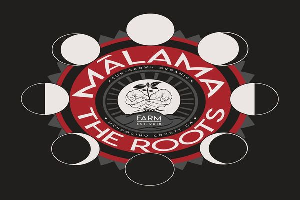 Malama The Roots
