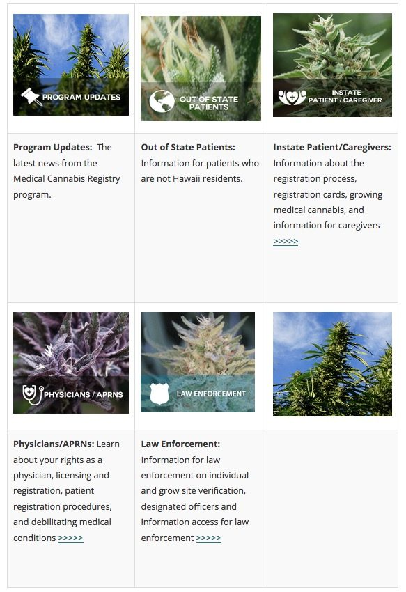 Medical Cannabis Registry Program Updates